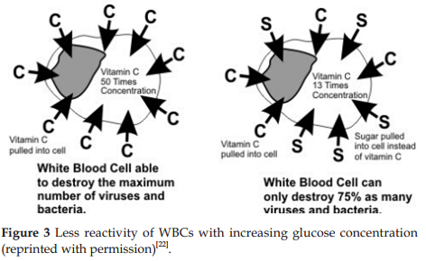Effects of sugar, salt and distilled water on white blood